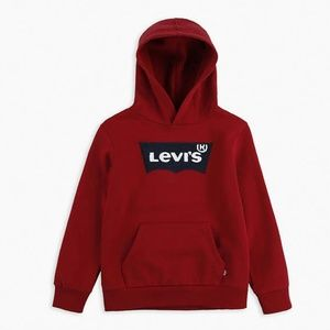 NWT Levi's Kids Youth Boys Terry Logo Hoodie